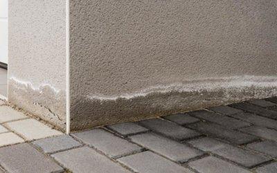 Gebäudeschäden aufgrund von Neubaufeuchte